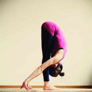 Nina Yogatravel Iyenga Retreat